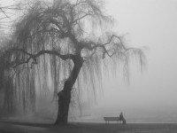 Депрессия - это переживание обиды и вины одновременно