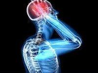 Как мозг реагирует на угрозу, как знание о собственной смертности делает нас людьми