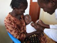 Что влияет на объем пожертвований и почему важнее выделять средства на лечение малярии, а не на спасение планеты от глобального потепления?