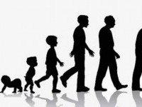 Семилетние циклы в жизни человека