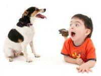 Маленькие детки и собаки идентичны в своем восприятии человеческих жестов
